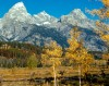 Grand Teton National Park Offering Variety of Fall 2009 Programs
