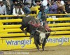 Bull Rider J.W. Harris Clinches Fourth World Champion Gold Buckle